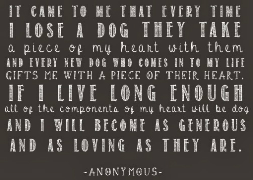 dog-quotes